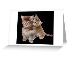 Love Kittens Greeting Card