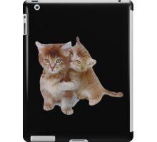 Love Kittens iPad Case/Skin