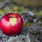 An Apple a Day... by Johanne Brunet