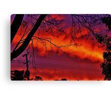 Vibrant Vision Canvas Print