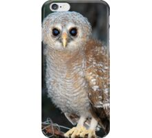 Young Owl iPhone Case/Skin