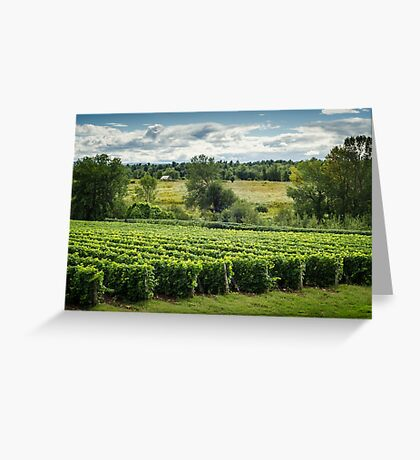 Afternoon in a Vineyard Greeting Card