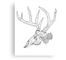 Whitetail Buck Skull with Pine Cones Metal Print