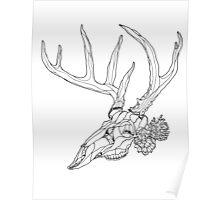 Whitetail Buck Skull with Pine Cones Poster