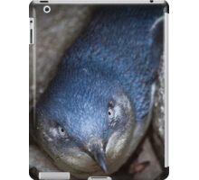 Fairy Penguin at St Kilda iPad Case/Skin