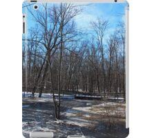 Winter's Perception iPad Case/Skin