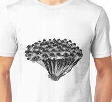 Sea Broccoli  Unisex T-Shirt