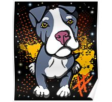Blue Pit Bull Pup  Poster
