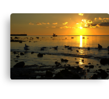 Three in a boat Canvas Print