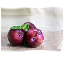Two plums Poster