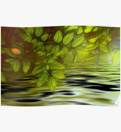Green leaves background in summer with shallow depth of field Poster