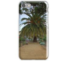 Arboured rose garden iPhone Case/Skin