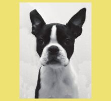 Portrait of Meryl the Boston Terrier Kids Clothes