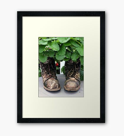 These Boots are made for... Strawberries Framed Print