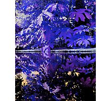 Reflection in Blue Photographic Print