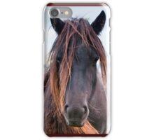 Scruffy iPhone Case/Skin