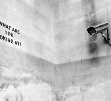Banksy, What are you looking at? by ManwithaCamera