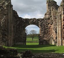 Lilleshall Abbey View 7 by Lawson Clout