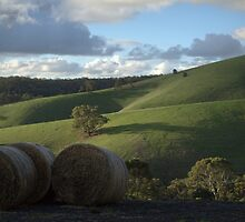Green Hill by Ben Loveday