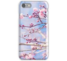 Pink blossom, blue sky iPhone Case/Skin