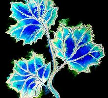 Leaves of Blue by Linda Callaghan