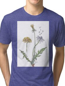 Taraxacum officinale (Dandelion) Botanical Tri-blend T-Shirt