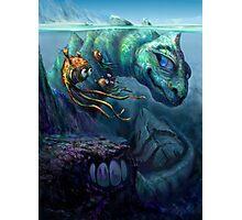 Sea Creature Photographic Print