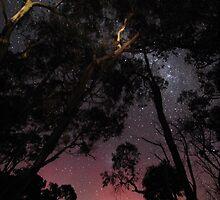 aurora australis at Forth River  13.7.2015 by gaylene