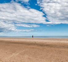Walking the dog on the the beach by Jeremy Lavender Photography