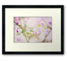Oriental flowers Framed Print