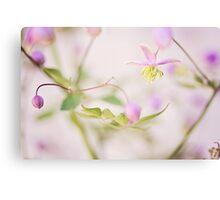 Oriental flowers Canvas Print