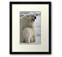Polar Love Framed Print