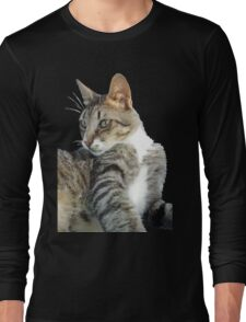 Tabby Cat Isolated Background Long Sleeve T-Shirt