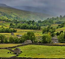 Swaledale by Trevor Kersley