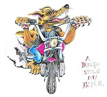 A dingo stole my bike RH Photographic Print