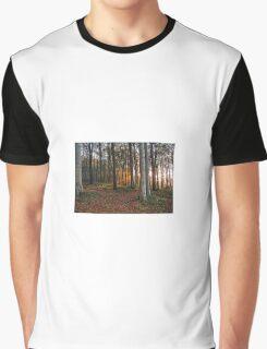Golden Sunbeam Graphic T-Shirt