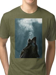Knight Artorias - The Wolf And The Abyss Tri-blend T-Shirt