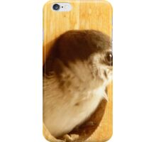 Baby swallow 4 iPhone Case/Skin