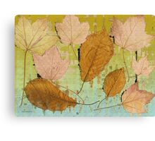 Graceful Leaves   Canvas Print