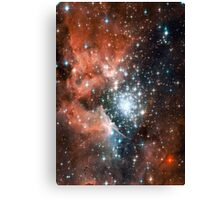 Red Galaxy 2.0 Canvas Print
