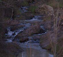 Hidden creek by peterhau