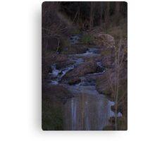 Hidden creek Canvas Print