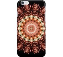 Digitally created firework sunburst iPhone Case/Skin