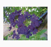 Pretty Purple Flowers - Vibrant Verbena Kids Tee