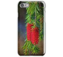 Weeping Bottlebrush  iPhone Case/Skin