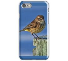 Palm Warbler iPhone Case/Skin
