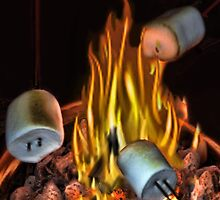 。◕‿◕。 TOASTING MARSHMALLOWS PICTURE/CARD。◕‿◕。  by ✿✿ Bonita ✿✿ ђєℓℓσ