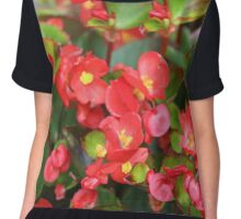 Red Flowers Bloom Chiffon Top