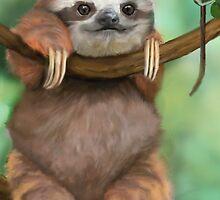 Baby Sloth by niccaridi1