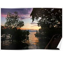 Palawan Mangrove Sunset Philippines Poster